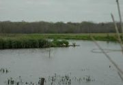 Voluntary Land Stewardship's Benefits to the Waters of Texas