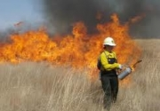 Prescribed Burning Fact Sheet