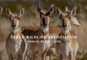 2019 Conservation Legacy Annual Report