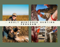 Adult Mentored Hunting Program
