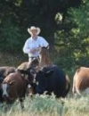 The Roundup on Agricultural Property Tax Appraisals